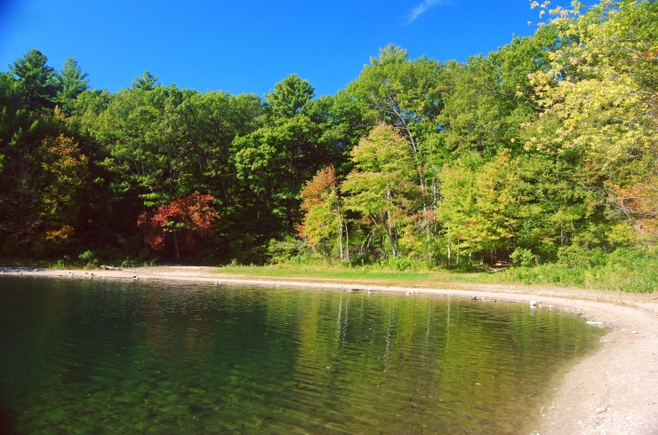Walden Pond in Concord, Massachusetts, USA.